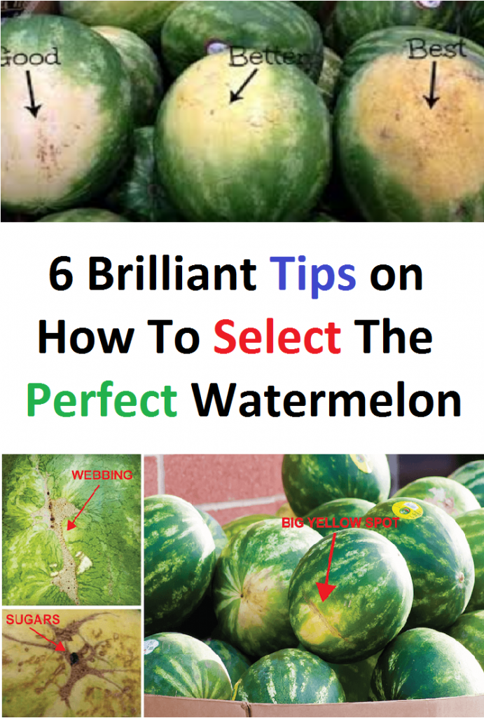 6 Brilliant Tips on How To Select The Perfect Watermelon