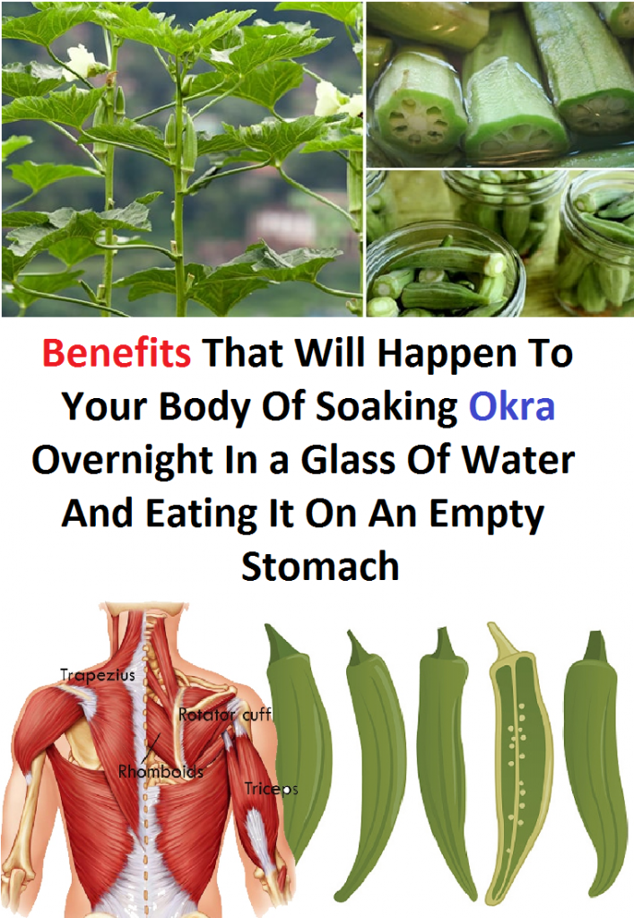 Benefits That Will Happen To Your Body Of Soaking Okra Overnight In a Glass Of Water And Eating It On An Empty Stomach