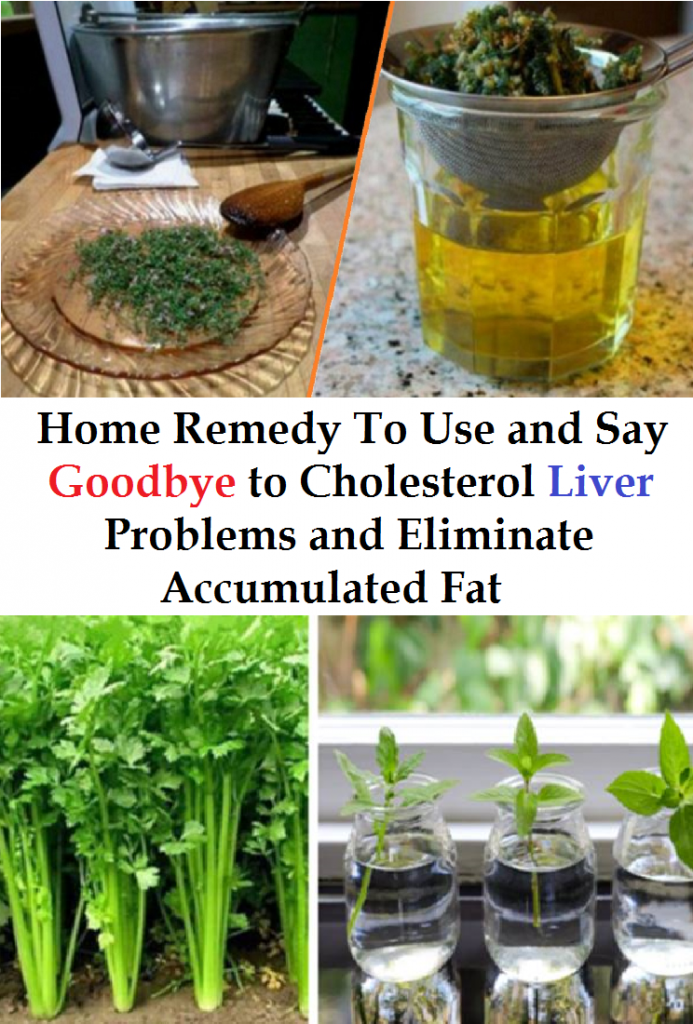 Home Remedy To Use and Say Goodbye to Cholesterol Liver Problems and Eliminate Accumulated Fat