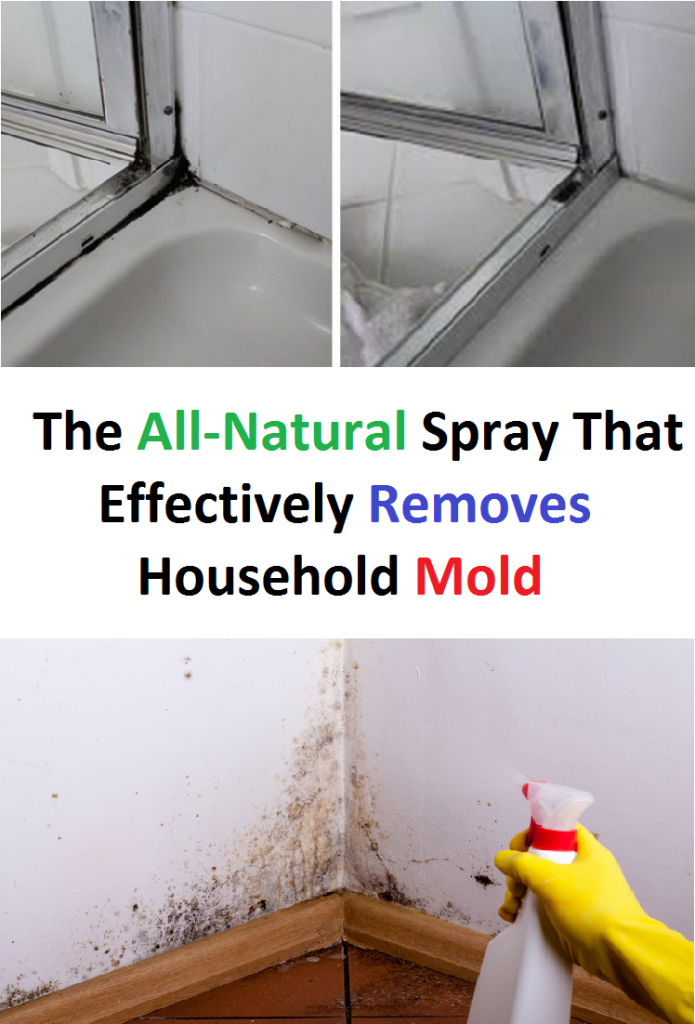 The All-Natural Spray That Effectively Removes Household Mold